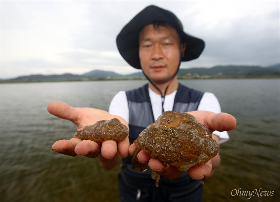 '낙동강지킴이' 정수근 시민기자가 24일 오후 낙동강 구미구간에서 건져올린 큰빗이끼벌레를 보여주고 있다.