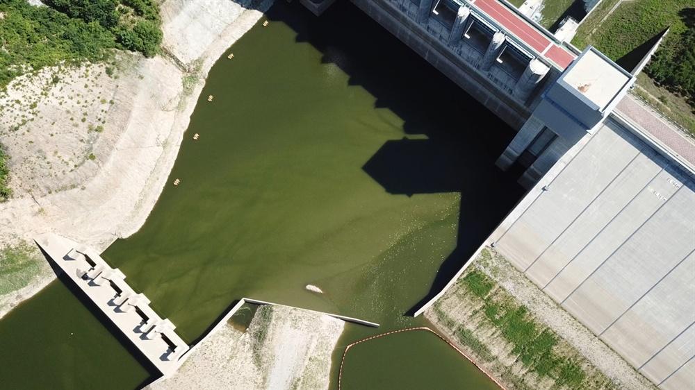 7월 15일 영주댐 녹조.