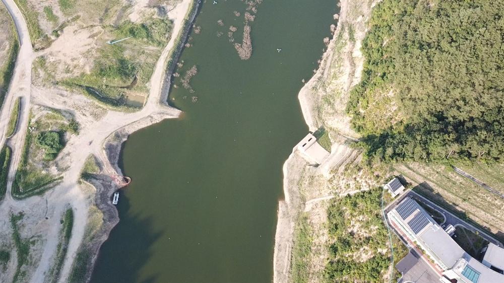 7월 16일 영주댐 녹조.