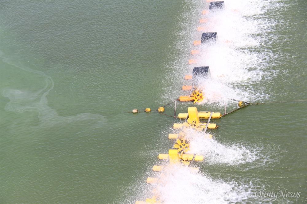8월 19일 낙동강 남지철교 아래에 폭기장치가 가동되고 있지만 주변에 녹조가 발생해 있다.