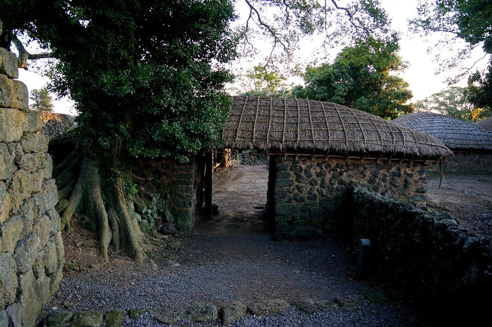 한봉일고택 이문간 올래가 길면 대문을 두지 않거나 정낭이 대신한다. 올래가 길지 않고 거릿길에 붙어 있는 경우 이문간(대문간)을 둔다. 이 고택은 올래 없이 바로 대문이 있다. 이문간 바로 옆에 팽나무가 자라고 있어 마을에서 제일 그윽한 집이다.