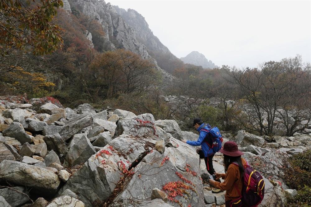 달마고도는 미황사를 품은 해남 달마산의 산허리를 따라가는 트레킹 길이다. 걷는 내내 달마산의 명물 기암괴석을 볼 수 있다.