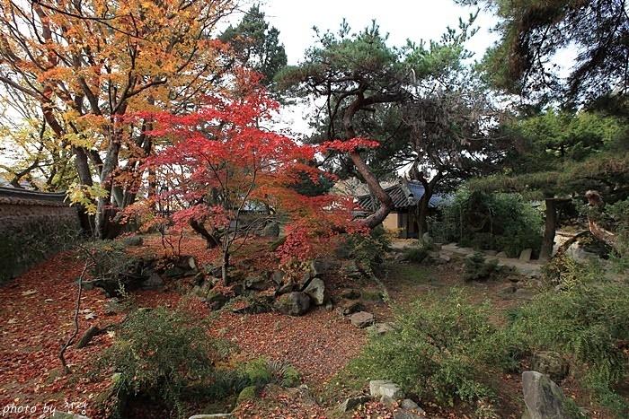 건재고택 연못 정원 비록 전통 정원에서 볼 수 있는 차경은 무시되지만 이곳에선 정원 그 자체의 아름다움을 탐닉할 수 있다.