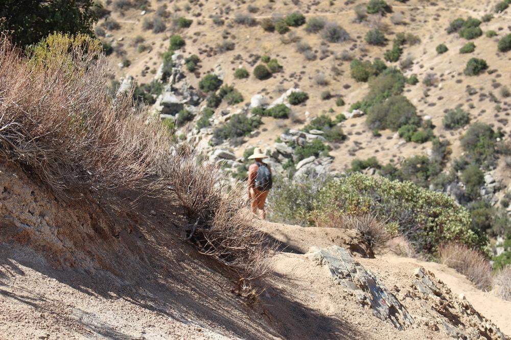 트레킹 가는 길에서 어렵지 않게 볼 수 있는 나체족이다. 캘리포니아 주법 상 공공장소에서의 음란 행위는 금지돼 있지만 산림당국은 일부 지역에서의 나체 행위는 허락하고 있다. 나체는 음란하다는 등식이 성립하지 않는다는 이야기다.