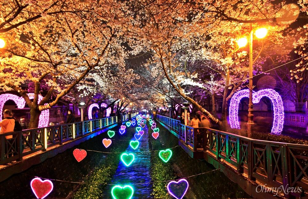 진해 벚꽃축제
