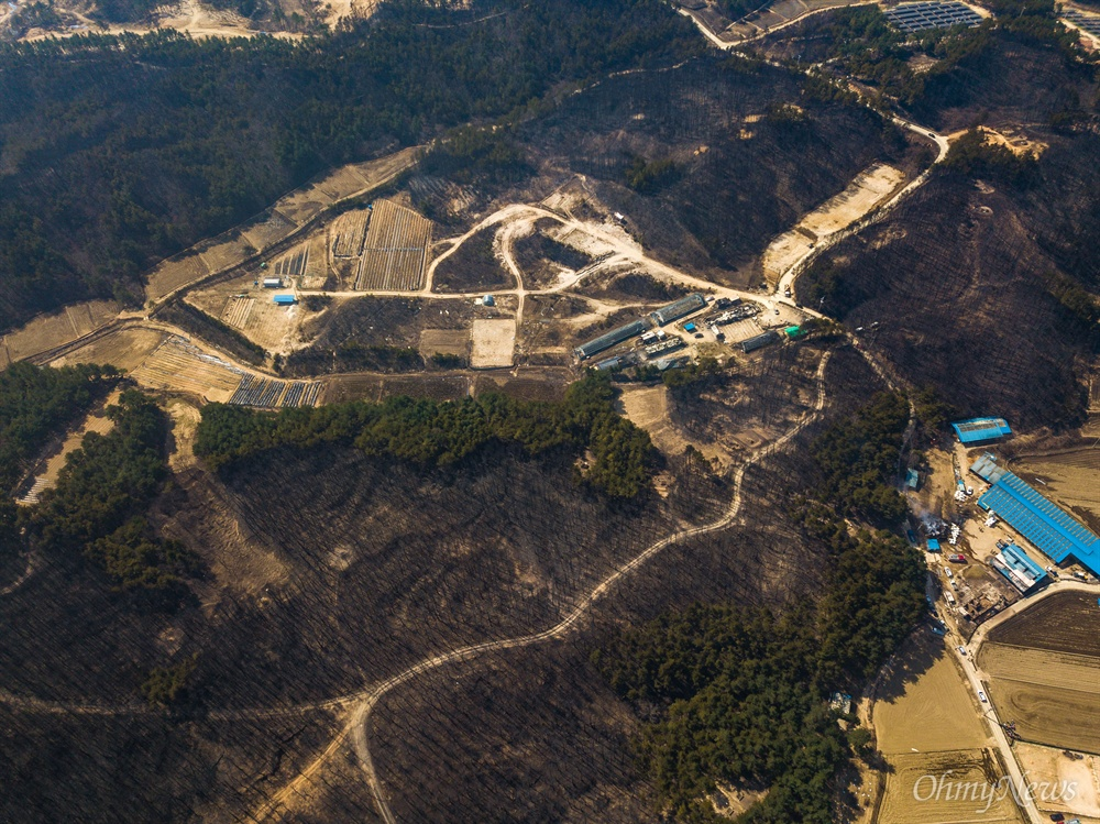 5일 오전 강원도 고성군 성천리 일대가 전날 강원도 고성에서 시작된 산불이 옮겨와 집들과 나무들이 전소 되었다.
