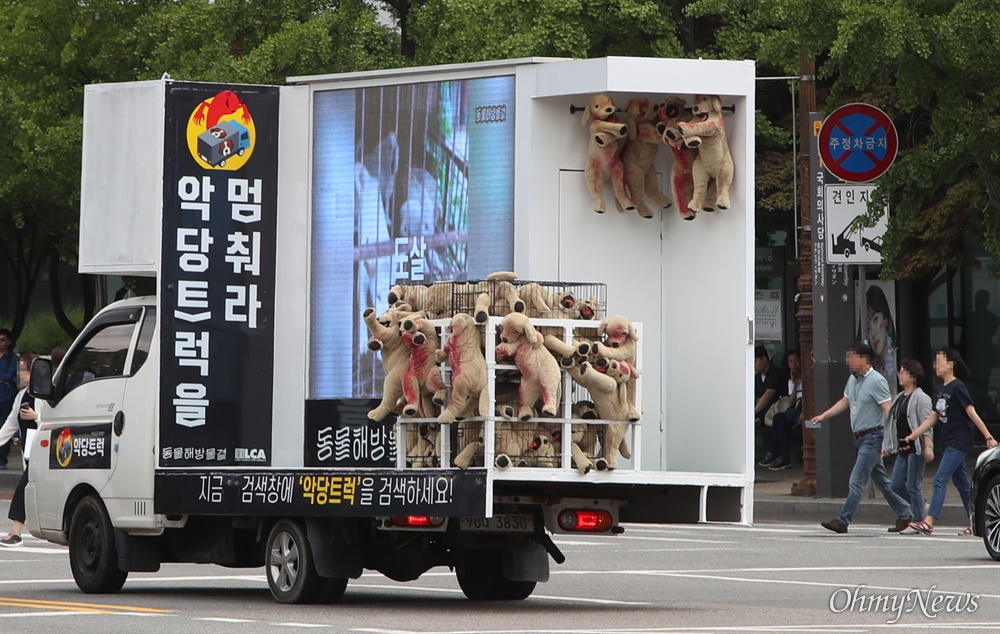 동물해방물결과 동물을위한마지막희망(LCA) 등 40여 개 동물보호단체 회원들이 12일 오전 서울 여의도 국회 앞 도로에서 개들을 철장에 넣어 도살장으로 실어 나르는 차량을 재현한 '악당트럭'을 운행하며 개 식용 반대를 국민들에게 촉구하고 있다.