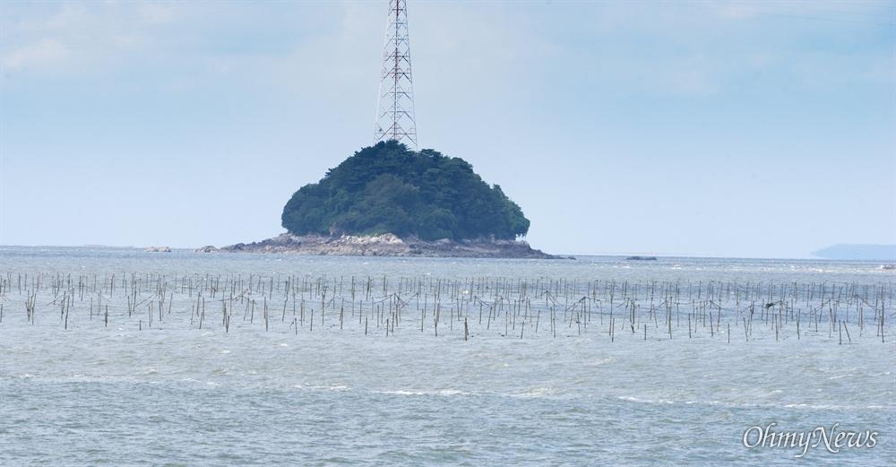 인천 장봉도의 바다 김 양식.