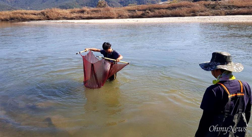 어류를 연구하는 성무성(대학원)씨와 손차영 마산창원진해환경운동연합 활동가가 9일 오후 낙동강의 지류인 합천 황강 하류에서 물고기를 관찰하고 있다.