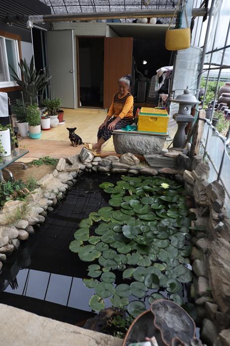 박영순씨가 만든 연못