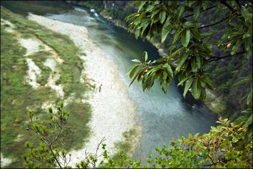 갈선대에서 내려다 본 낙동강 왕모산을 휘감아 흐르는 이 강과 산에서 육사의 유년이 여물었으리라.