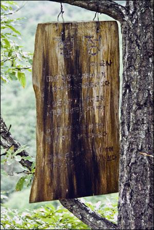 """갈선대에 걸린 시 """"절정""""  누구의 솜씨인가, 나무에 시를 새기고 철사로 나뭇가지에 걸어 놓았다."""