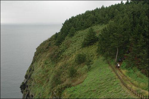 죽도 주변은 망망대해 바다뿐이랍니다 워낙 가파른 언덕으로 이루어진 해안선이라 울타리를 넘어서는 절대 안된답니다
