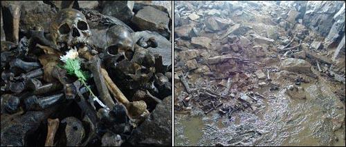 경북 경산 코발트광산의 학살지 무덤을 발굴했을 때 나온 유골의 모습.