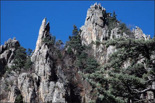 금강의 기암 온갖 동물 모양을 한 형상의 바위가 금강산을 에워싸고 있다.