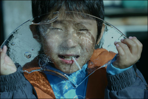 서울 첫 얼음 올해 서울에 첫 얼음이 얼었다. 얼음을 들고 기뻐하는 막내.