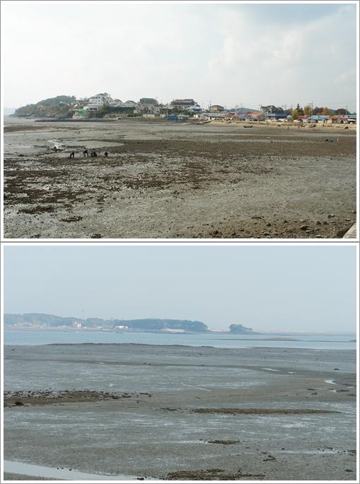 바닷가 풍경 황도의 바닷가 풍경과 천수만 건너편의 간월도