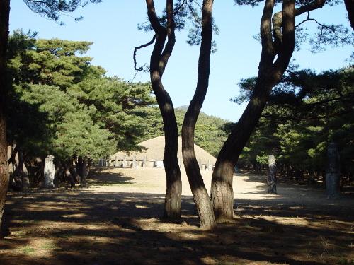 애처가였던 흥덕왕은 장회왕비와 함께 이곳 경릉에 묻혔다.