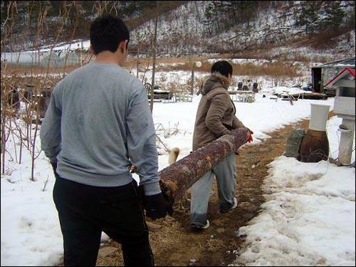 통나무. 산에서 해 온 나무를 들고 집으로 오는 여행자들. 이마엔 땀이 맺혔다.