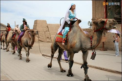 관청 의식 행렬 자위관 관청 의식에 참가해 낙타를 타고 전통복장을 입고 있는 여행객들