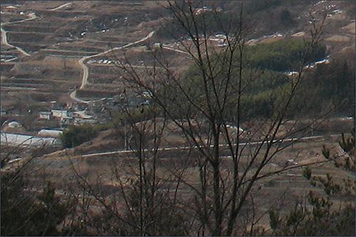 금대산에서 바라본 군자마을.