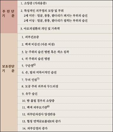 한국인 아토피피부염 진단 및 가이드라인