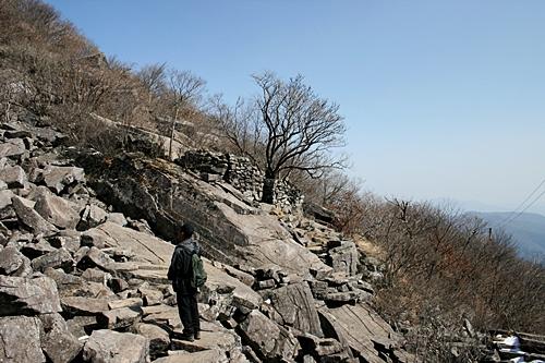 지공너덜 나무아래로 보조석굴이 자리하고 있다.