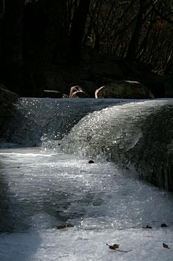용문사 계곡 저 밑으로 흐르는 봄의 소리