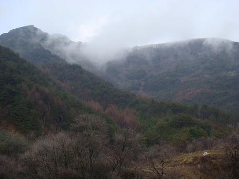 반론산. 안개가 반론산을 에워싸고 있다. 산은 알까. 그날의 일을.