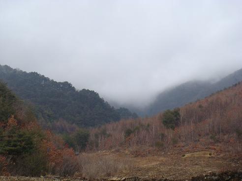 모습을 감춘 반론산. 마을에서 반론산으로 올라가는 길. 산은 안개를 품어 자신을 감춘다.