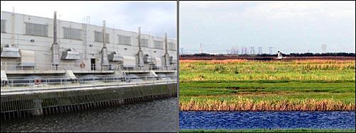 운하의 물을 펌핑하는 시설(왼쪽)과 펌핑한 물을 흘려 보내 조성된 습지.