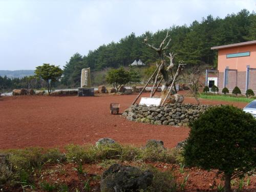 평화박물관. 가마오름을 역사,인권,평화교육의 장으로 활용하고 있는 사설박물관이다. 노무현 전 대통령의 평화선언문을 옮겨놓은 기념비가 눈에 띈다.