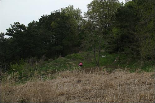 군창터지. 황산성(충청남도기념물 제56호)을 알리는 표지석이 서 있다.