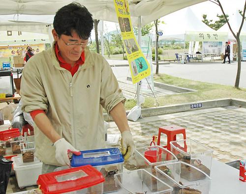 장수풍뎅이를 연구하고 키워서 판매하는 순천에서 올라온 김수환씨입니다.