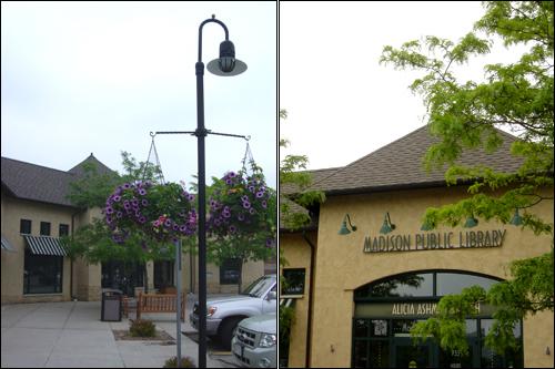 미국 전역에는 지역 주민들의 편의를 최대한 배려한 공공도서관이 있다. 사진은 위스콘신 매디슨시 교외 주택가에 위치한 공공도서관(Public Library) 분관.