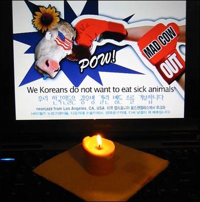 LA에서도 재택촛불 하나 추가요~ 용기가 없어 거리로 나가 촛불을 밝히지는 못하고, 소심하게 노트북으로 피켓 하나 만들어 놓고서 그 앞에 촛불을 밝힙니다. 자, 바다 건너 로스앤젤레스에서 재택촛불 하나 추가 들어갑니다. 광우병 소와 쥐박이는 물러가라 훌라훌라~ 야옹! ^ㅅ^