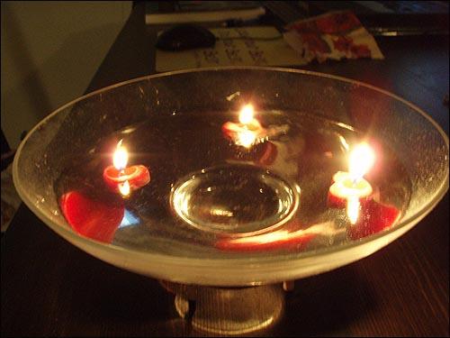 명박이가 빨리 정신차리기를... 여기는 미국 애틀랜타입니다. 멀리 있어서 촛불집회에 참석하지 못하고, 집에서 촛불켜고, 이명박씨께서 빨리 정신차리기를 바랬습니다.