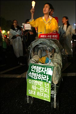 미국산 쇠고기 수입 전면개방 반대 72시간 릴레이 농성이 마무리 된 가운데 8일 저녁 서울시청앞 광장에서 열린 32차 촛불문화제에 참석했던 한 시민이 애완견을 유모차에 태우고 행진하고 있다.