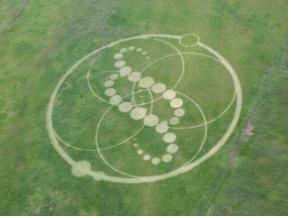 하늘에서 본 전체 크롭서클(출처: http://blog.naver.com/98papa)