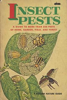 벌레도감 주머니에 쏙 들어가는 벌레도감. 1966년에 나온 판입니다.