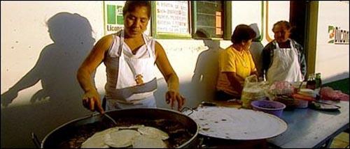 미국 독점기업의 유전자조작 농산물 유입으로 위협받고 있는 멕시코인들. 멕시코인의 주식인 옥수수로 만든 또띠아는 미국에서 대량으로 유전자조작하는 농산물이다.