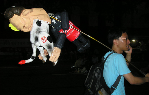 이명박 대통령과 미국산 소를 합성해 만든 인형을 들고 다니는 한 시민은 가는 곳마다 인기다.