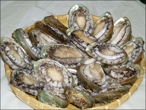 '조개류의 황제'로 불리는 전복. 저지방 고단백의 건강식품으로 널리 알려져 있다.