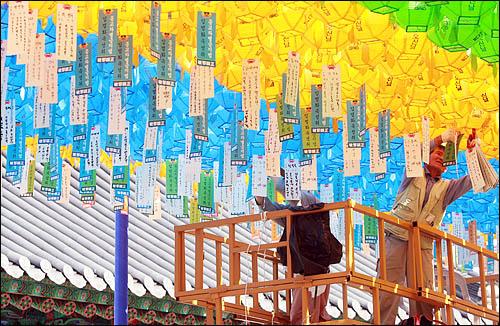 이명박 정부의 '종교차별'을 규탄하는 범불교도대회를 앞두고 26일 서울 견지동 조계사 앞마당에 신도들이 종교차별금지법 입법화를 위한 연등을 매달고 있다.