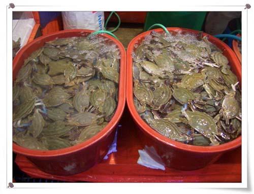 꽃게들이 꽃게, 꽃게를 외치며 합창한다. 찜이나 게장, 매운탕 등 무엇으로 먹어도 맛있다. 3마리에 1만원정도니 생각보다 가격도 매우 저렴하다.