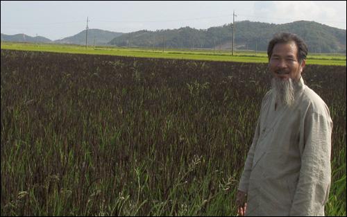 농업인들 사이에서 '유기농업의 교과서'로 통하는 강대인 씨가 녹색미가 자라는 벼논에서 환하게 웃고 있다.