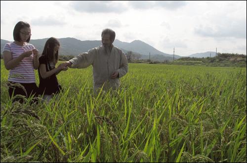 슬비와 예슬이가 적색쌀이 자라는 벼논에서 신기해하자 강대인 씨가 낟알을 건네며 직접 까볼 것을 권하고 있다.