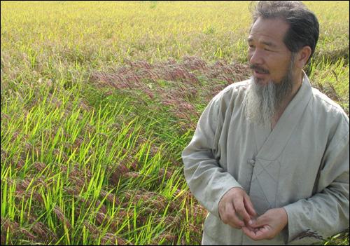 강대인 씨가 다섯 가지 색깔의 벼가 심어진 논에서 생명역동농법에 대해서 이야기하고 있다.