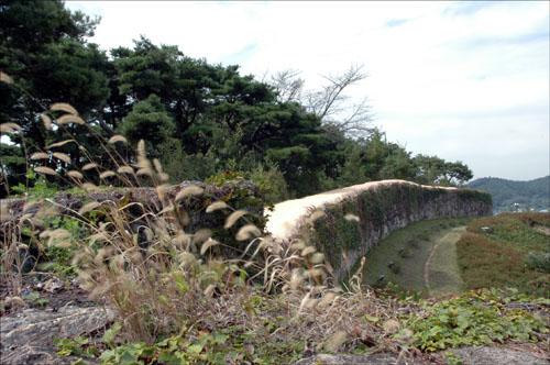 고창읍성 성곽 성곽에는 강아지밥풀이 가을바람에 흔들리고 있다.