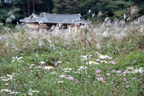 가을향기 성내에는 가을향기가 널려 퍼져 있다. 뒤로 보이는 작청이라는 건물은 조선시대때 이방과 아전들이 소관 업무를 처리하던 청사이다.